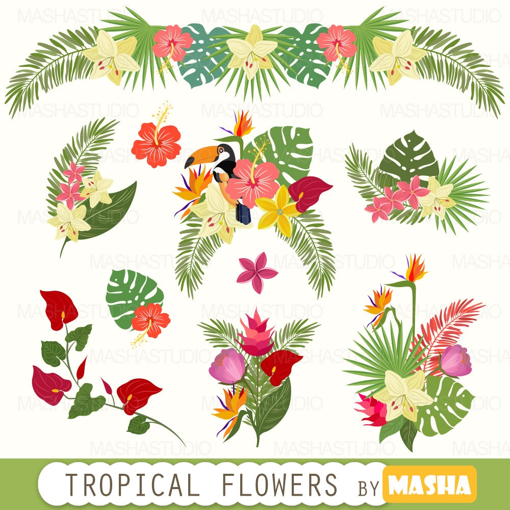 tropical clipart tropical flowers clipart with rh etsy com clipart tropical fish clipart tropical flowers