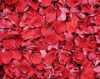 Scented WEDDING TOSS PETALS Red Fresh Freeze Dried, Bio-degradable, Real Rose Petals, Wedding Color Match, Bulk Orders