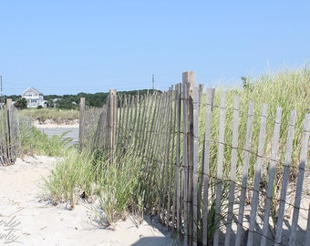 Photography, Beach, Beach Path