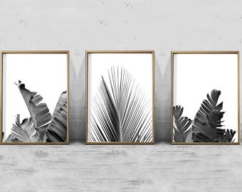 Set Of Leaf Prints Foliage Black White Wall Art Banana Leaf Palm Tropical  Decor Coastal With Wood Wall Decorations