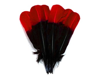 Turkey Feathers, 1/4 lb - RED & BLACK Two Tone Turkey Round Tom Wing Secondary Quill Feathers : 4101
