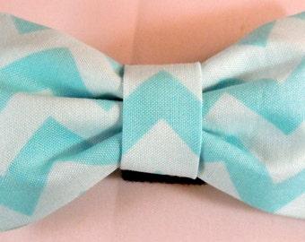 Dog Flower, Dog Bow Tie, Cat Flower, Cat Bow Tie - Blue Chevron