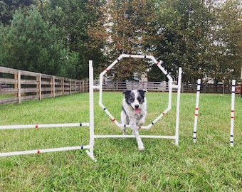 Dog Agility Equipment Hoop Jump/Octagon Tire Jump | UV resistant pipe!  IN STOCK and ready to ship!