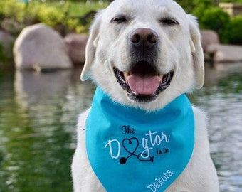Personalized The Dogtor Is In • Turquoise Bandana * Therapy Dog Reversible Bones • Monogrammed Classic Tie Pet Scarf by Three Spoiled Dogs