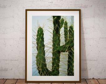 Affordable art-Modern art print, cacti art print, instant download, desert art print, cactus artwork, succulent art, cactus wall print