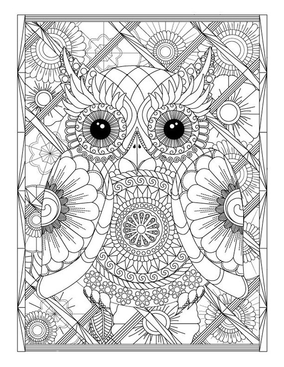 Owl and Flowers Advanced Coloring Page for Adults Printable