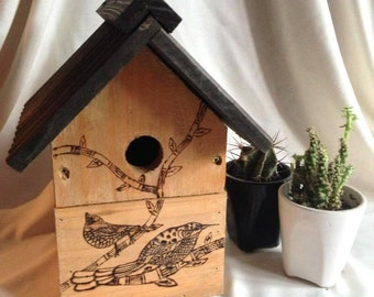 Pyrography wood burned birds on a bird house