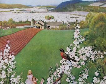 "1955 ""Harbinger of Spring"" - John Clymer Art - Robin Bird Singing - Apple Blossoms Farm - Vintage Saturday Evening Post Magazine Cover"