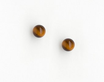 Earrings Tiger's Eye and Silver