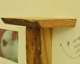 No. 48 - Black Locust Mini Shelf