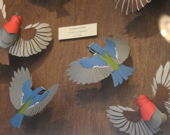 Garden Dwellers. Paper-cut Robin and Blue Tit Sculpture. 1:2 Scale. 2017.