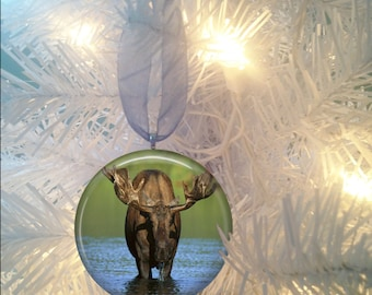 Moose #4 Christmas Tree Ornament