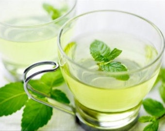 16 Organic Peppermint Tea Bags