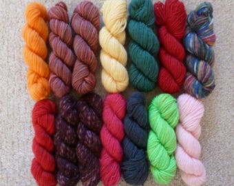 Sock Yarn Mini Skeins - 10 Grams Each, 12 Colorways - Set #2