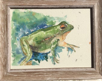 Frog in the frame