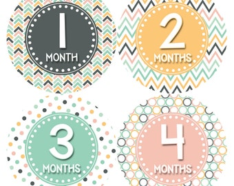 Monthly Baby Stickers Baby Month Stickers Baby Girl Month Stickers Monthly Photo Stickers Monthly Milestone Stickers 417
