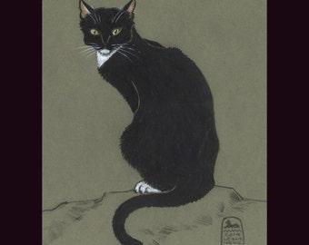Cat Art Print, Tuxedo cat, black and white, Le Chat en Vert
