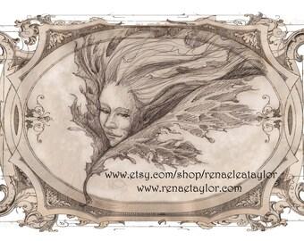 Leaf Fae, Greeting Card by Renae Taylor