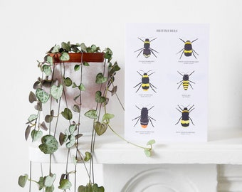 British Bees Card - Bee Greetings Card - Bee Art Print - Bee Illustration - British Nature Print - A6 Art Print - Bumblebee Card