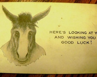 vintage postcards ... DONKEY COMIC Here's Looking At You  .. POSTCARD . ..