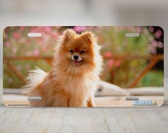"""Pomeranian License Plate, Teacup Pomeranian Car Tag, Pomeranian Puppy Dog Front License Plate, Decorative License Plate """"Pomeranian""""-289"""