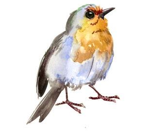 Robin art bird artwork, Original watercolor painting, bird lvoer art, robin painting, watercolor birds