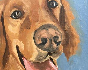 Custom 8x10 oil golden retriever pet portrait
