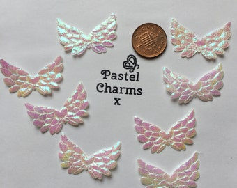 Pack of 10 iridescent wings x