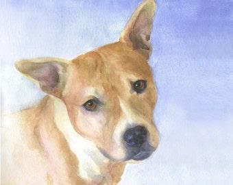 Dog Portrait Commission, Custom Pet Portrait, Original Watercolor Portrait, Pet Memorial