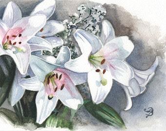 Blanche fleurs de Lys, aquarelle originale, livraison gratuite