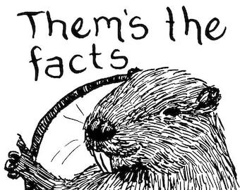 Castors : Eux s les faits