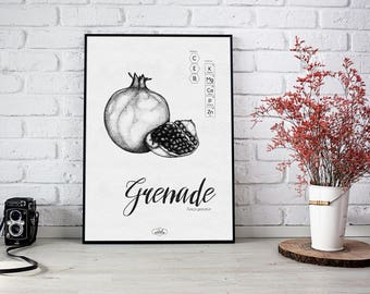 Pomegranate: illustration in black and white drawing by pointillist technique risographie print