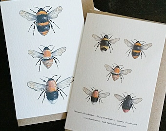Bumblebee cards. British bumblebees. Hand painted bee card. Bees of Britain