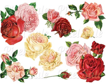 ROSES collage digital, instant download, wedding clipart, digital flowers, pink red JPG PNG digital download