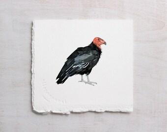 California Condor Original Watercolor Painting, endangered species animal art