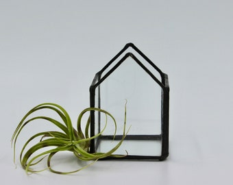 Airplant Terrarium, Glass Airplant Holder, Terrarium, Glass House, Office Decor, Airplant, Greenery, Gardening, Plants, Glass, Stained Glass