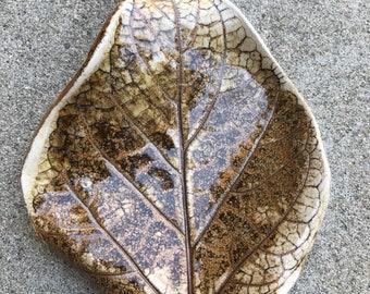 Organic shaped leaf dish