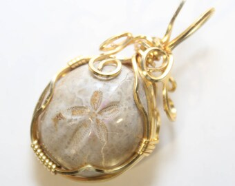 Mini Fossilized Sand Dollar Gold Plated Wire Wrapped Necklace Pendant