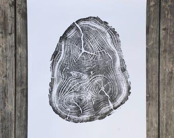 Tree Anatomy, Botanical tree print, real tree stump art, Black Locust Tree, woodcut print, Tree stump print, Tree ring wall art, Erik Linton