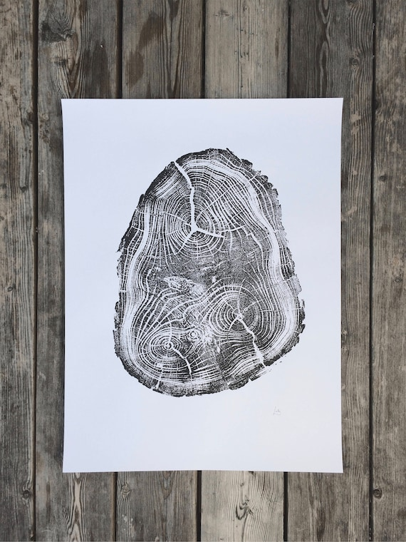 Tree Anatomy Botanical tree print real tree stump art Black