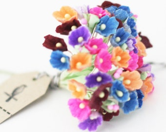 Happy Confetti mix of Forget Me Not Flowers