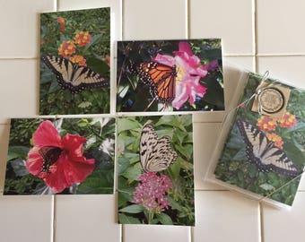 Beautiful Butterflies Card Set