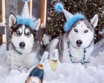 Dog Birthday Hat, Cat Birthday Hat, First Birthday, bling birthday hats, silver party hat