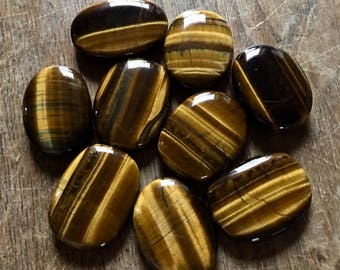 Small Polished Tiger's Eye Palm Stones