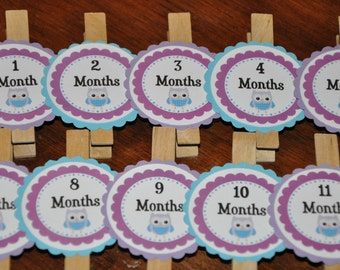 Owl Photo Clips. Owl. Photo Clips. Photo Banner. Set of 13. Newborn-12 Months. Purple. Turquiouse. Owl Party