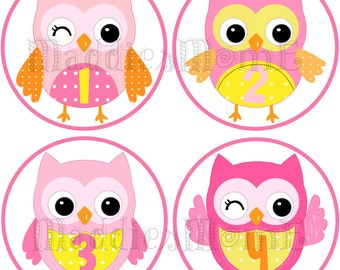 Monthly Baby Girl Stickers, Milestone Stickers, Baby Month Stickers, Monthly Bodysuit Sticker, Monthly Stickers Owls (Samantha)