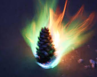 Fire Color Changing  Pinecones with Decorative Bag and Fresh Pine Scent