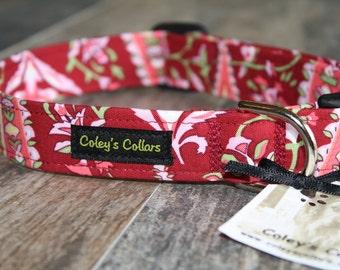 """Dog Collar, Dog Collars, Girl Dog Collar, Boy Dog Collar, Amy Butler Dog Collar, Modern Dog Collar, Trendy Dog Collar,  """"The Wine Paisley"""""""