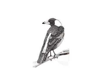 Australian magpie pattern art drawing zentangle doodle art black and white bird print
