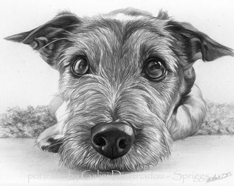 Custom drawn pencil portraits ***any subject of your choice**